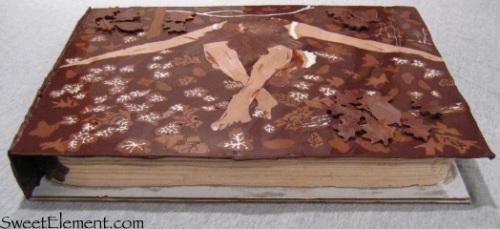 Sristi Book Cake
