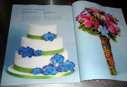 Sweet Element spread in (201) Bride Summer 2009