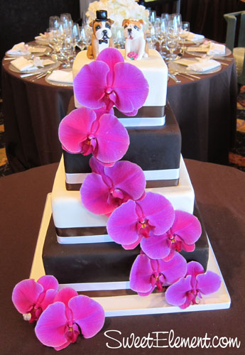 Posted in Cakes Wedding Cakes Tagged brown and white wedding cake cake